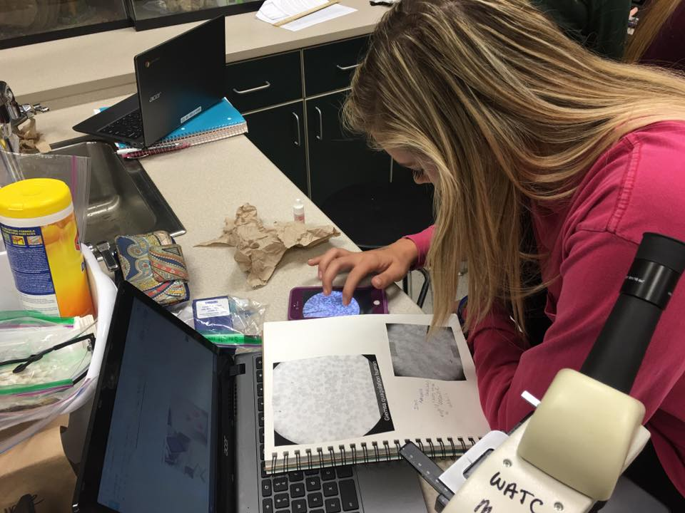 Biology student examines her lab project.