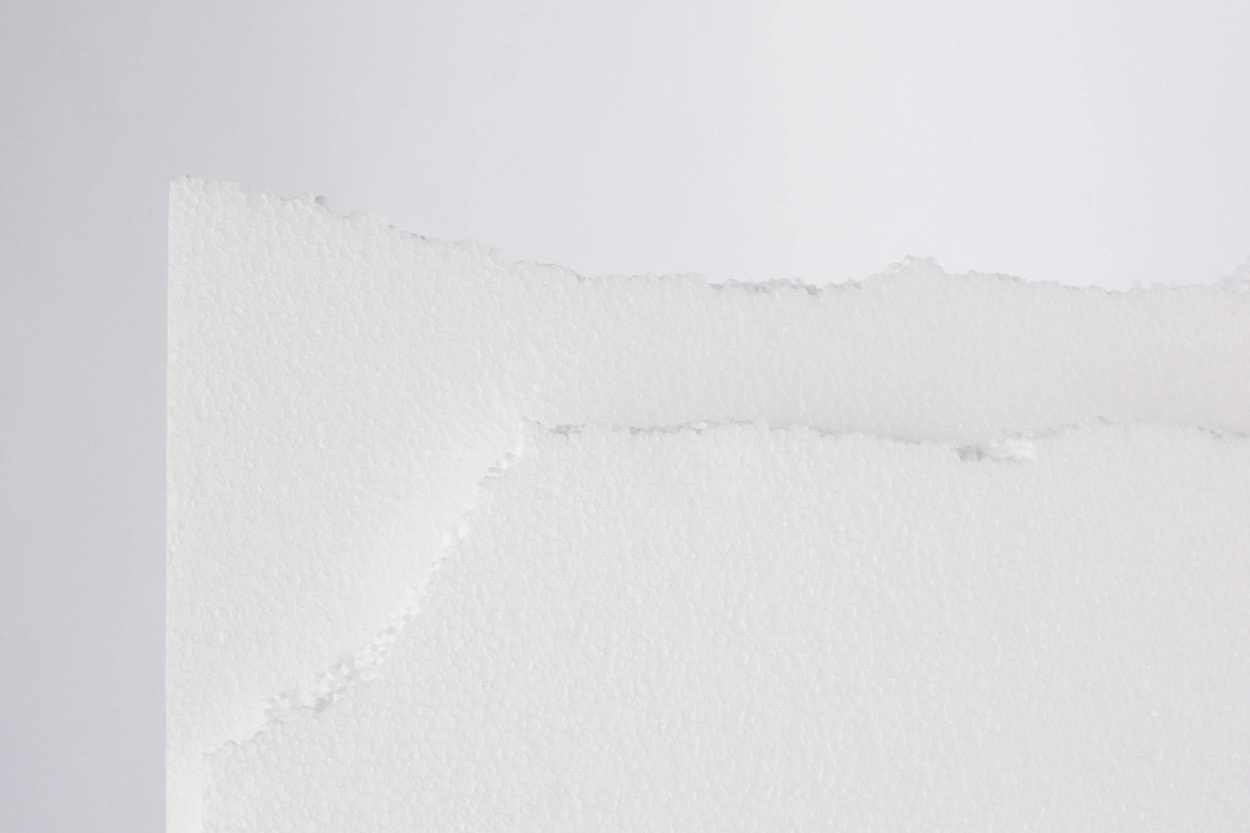 Styrofoam Waste