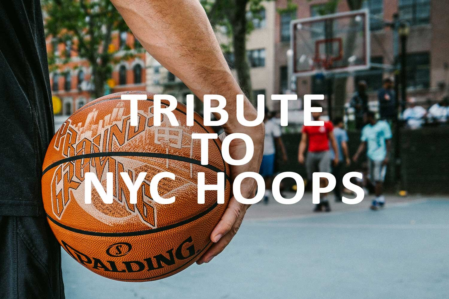 Tribute to NYC Hoops link