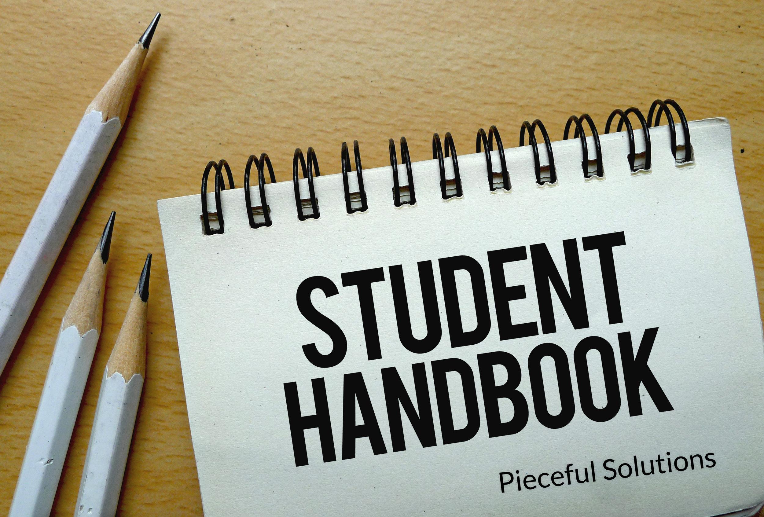 PS-Academy-Arizona-studenthandbookpic.jpg