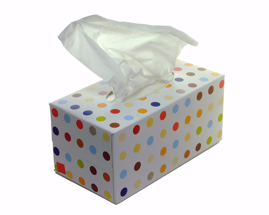 1 Box of Tissue Paper - Approximate Cost $1.00