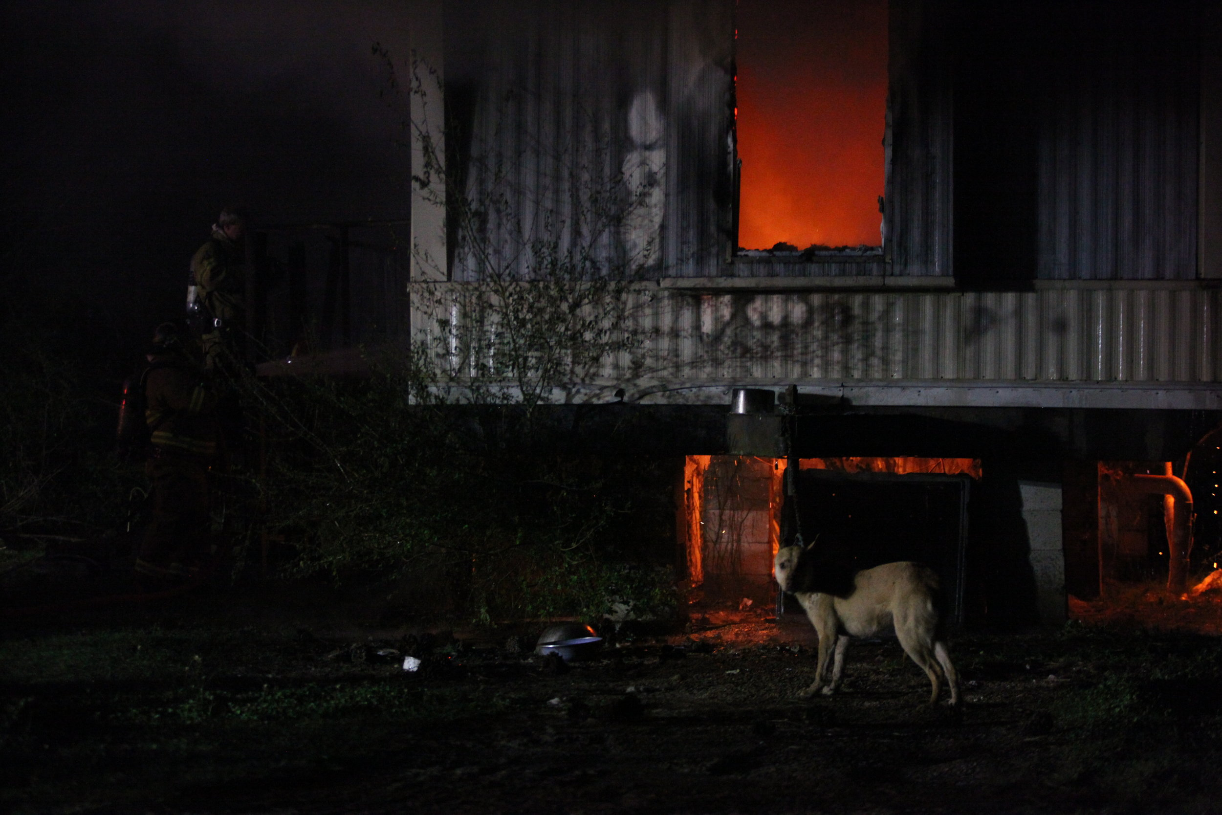 A dog is seen chained to a trailer as Vicksburg Fire Department attempts to extinguish a fire that occurred at 500 Hall Road around 9 p.m. Friday. The cause of the fire is unknown with no known injuries. The dog was eventually cut free from the chain. (Courtland Wells | The Vicksburg Post)