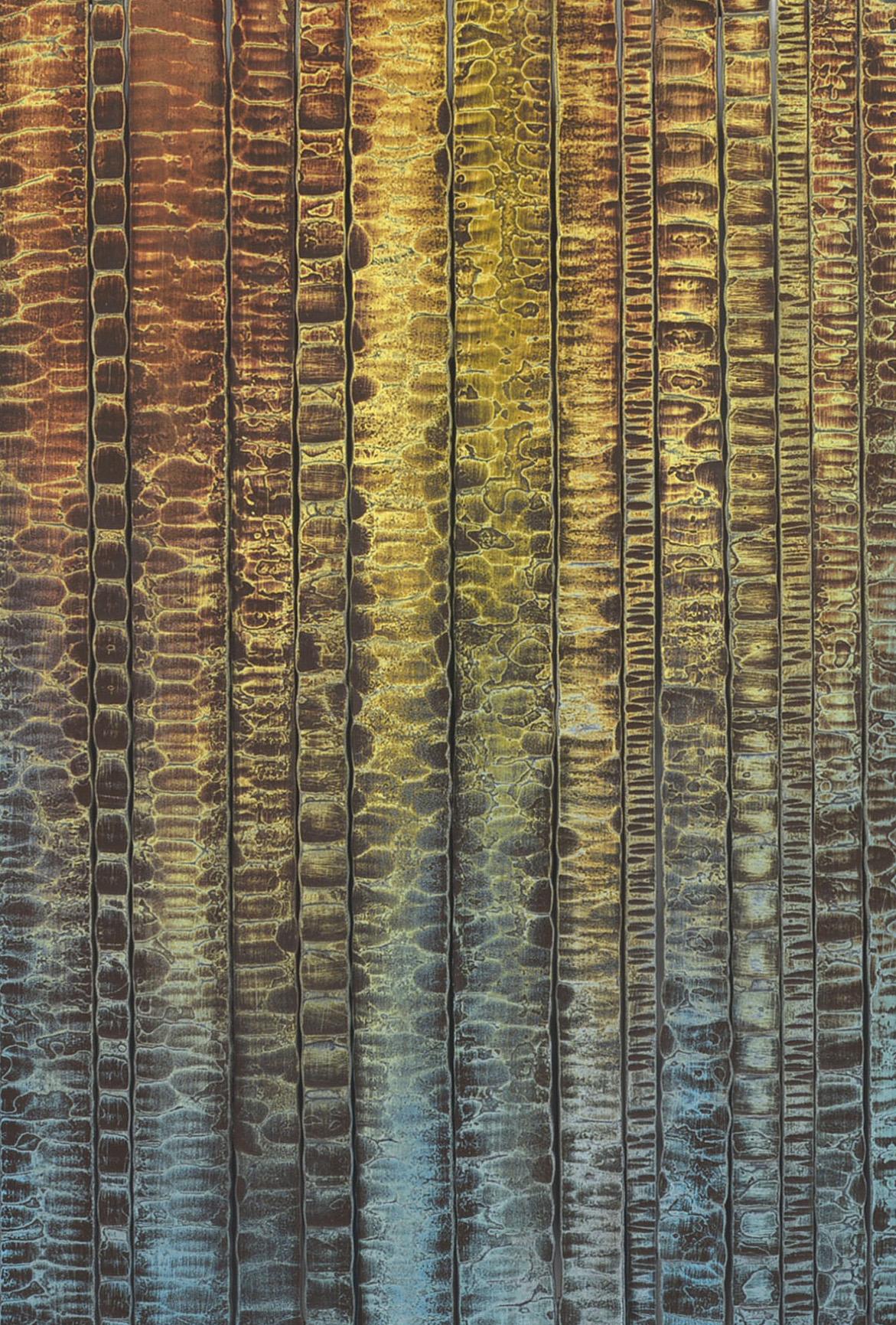 Basalt Curtains by Madacsi Studios