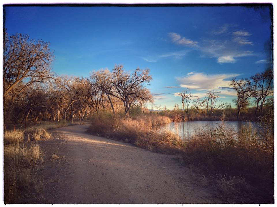 Path out of wilderness along the water.. joanna es campbell