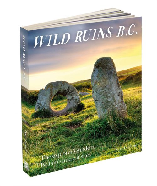 Wild-Ruins-BC-3D-low-res-500x594.jpg