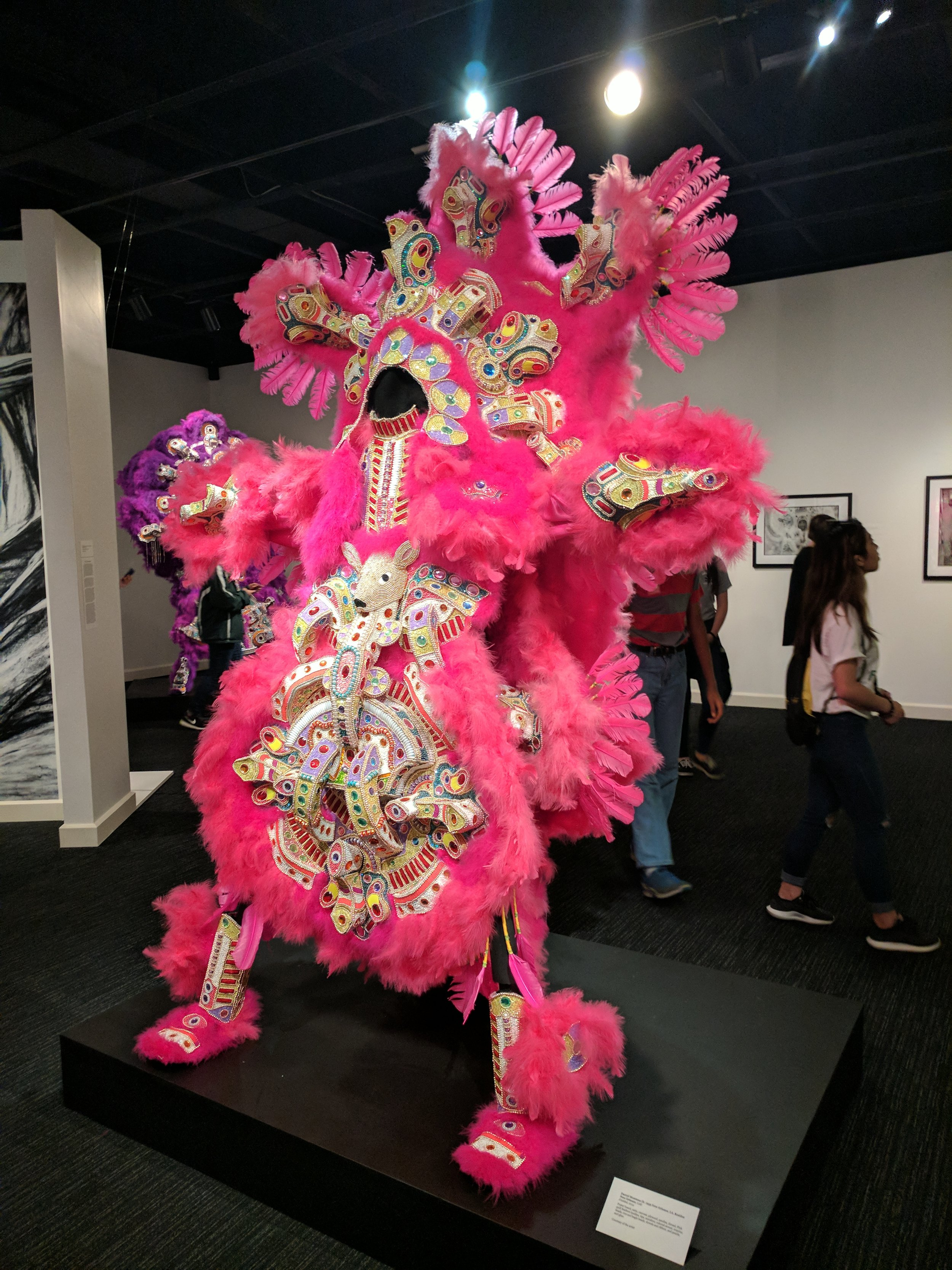 Big Chief Darryl Montana, Installation View at New Orleans Jazz Museum