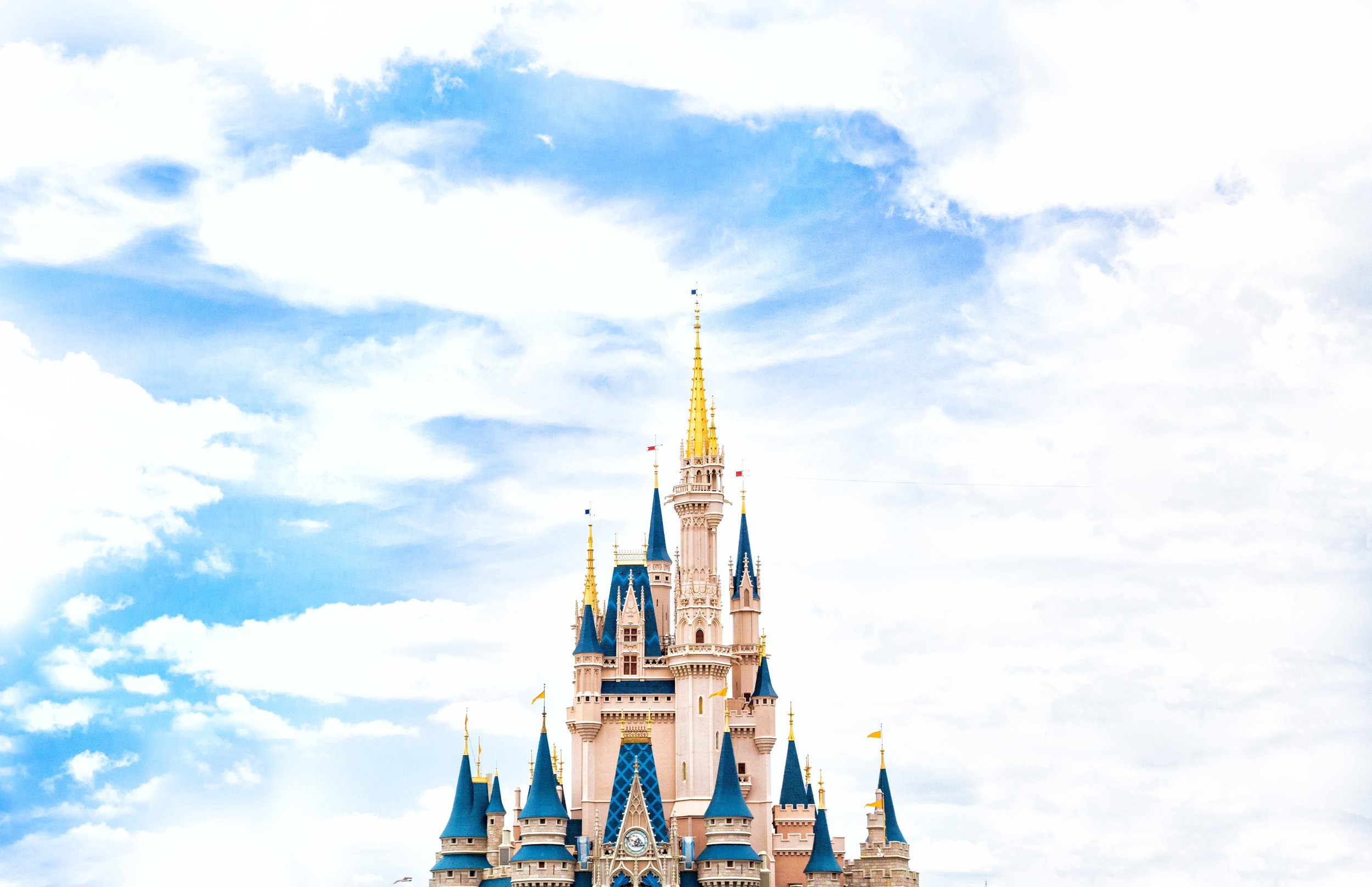 Disney Vacation Package - The Magic Starts Now.