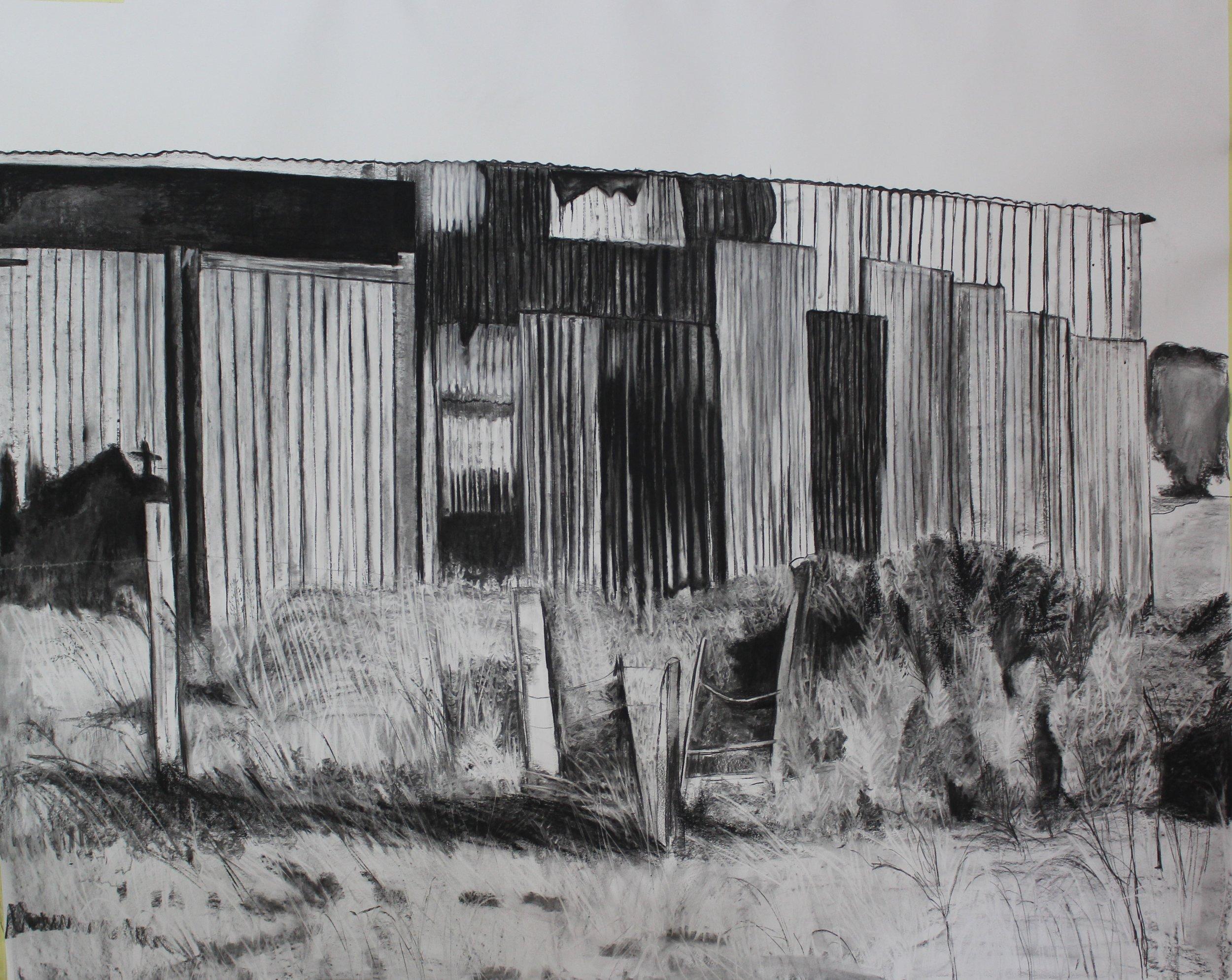 head in shed 2018.JPG