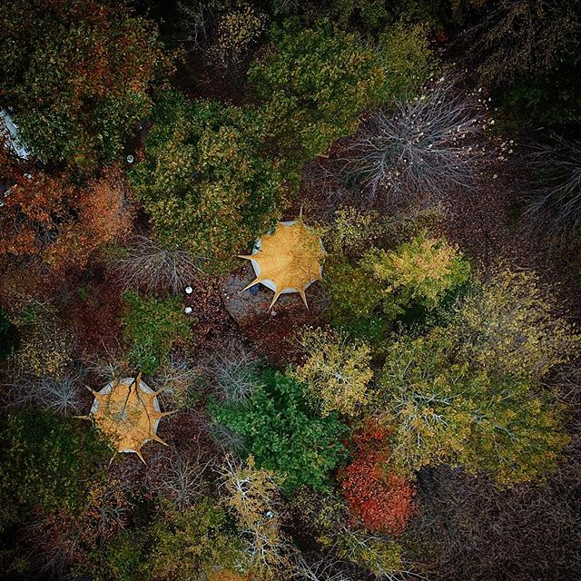 The beautiful patchwork of fall is coming into view at The Eco Camp. Are you ready for winter camping? We are! • • • • • #419  #theecocamp #yurt #Toledo  #camping  #Outdoors  #canvascamp  #lotusbelle  #toledoohio  #glamping  #camping  #oakopenings  #ohio  #ohiobloggers #ohioexplored #ohiofindithere #ohiotourism #igersohio