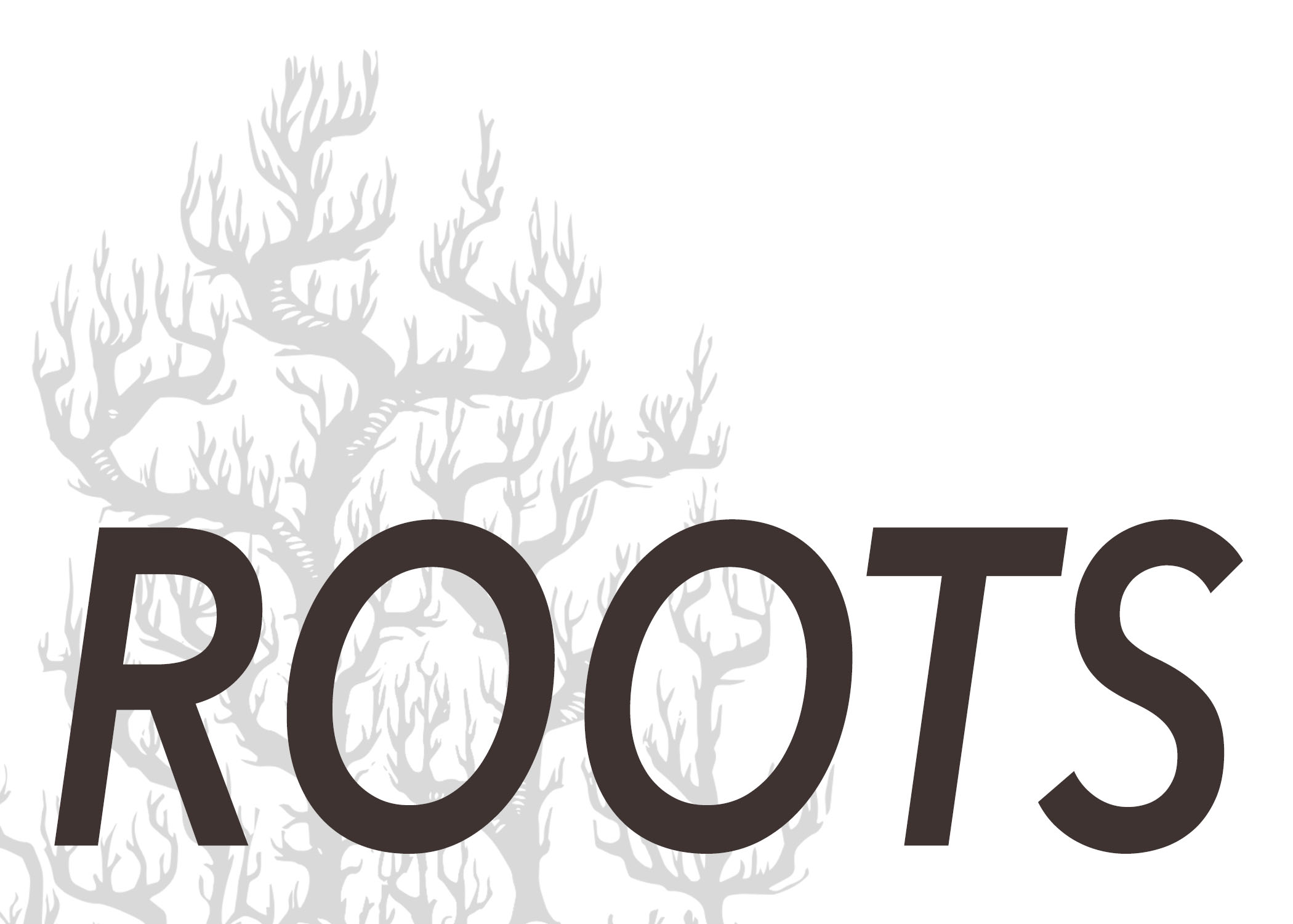 rootspostcardfront.jpg