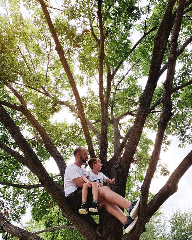 Two little monkeys, sitting in a tree. 🐒🌳🐒