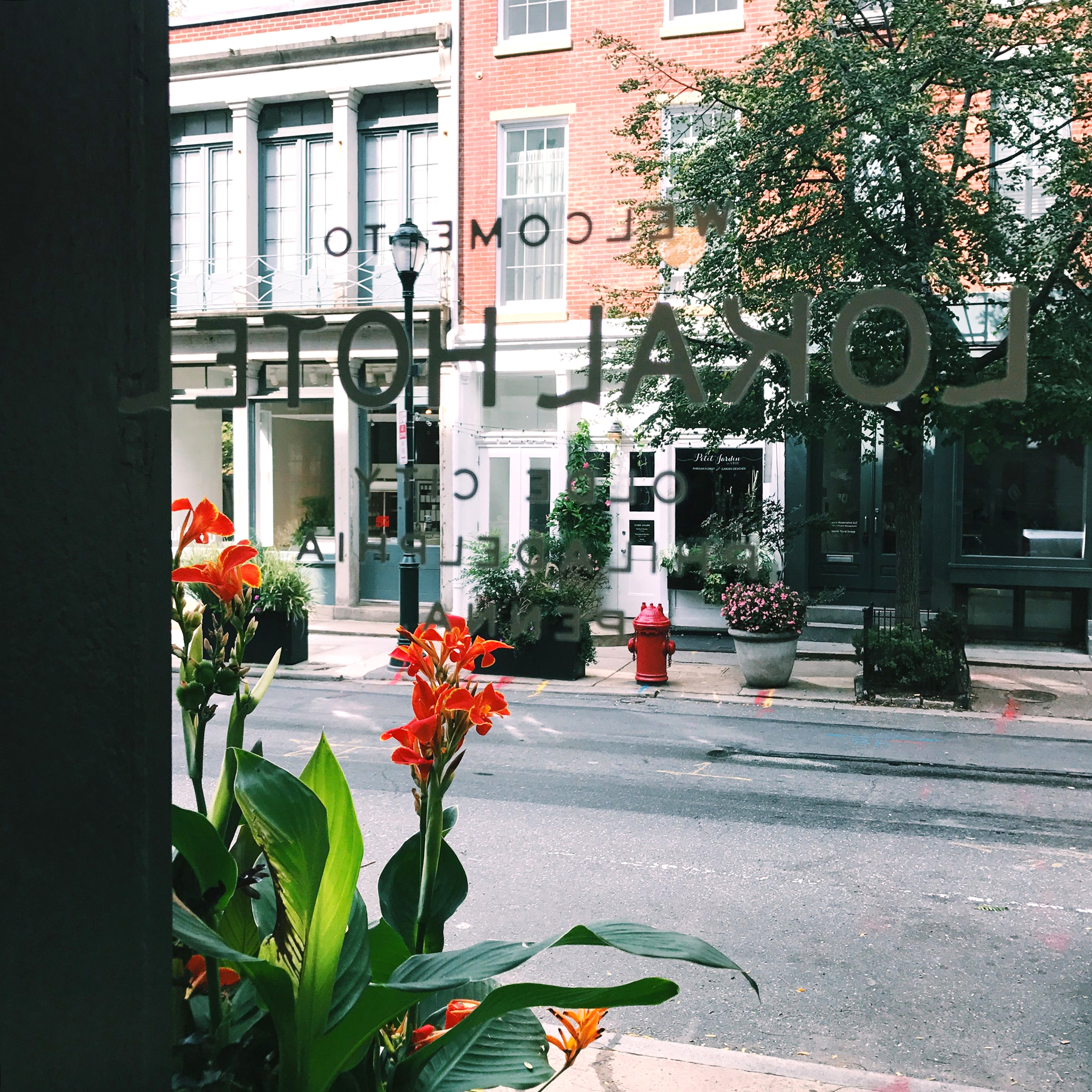 Travel: Stay Lokal in Philly | Design Confetti