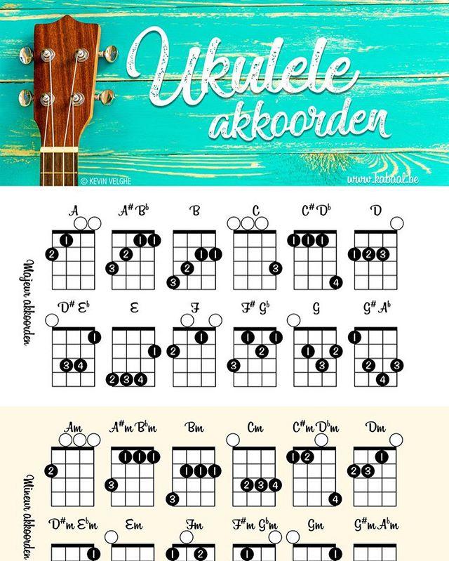 Heb je thuis een ukulele liggen en je wilt hier wat akkoorden op kunnen spelen? Goed nieuws! www.kabaal.be heeft een gratis poster online gezet met alle majeur en mineur basisakkoorden. Download vandaag nog snel jouw cadeautje! Directe link in onze bio.