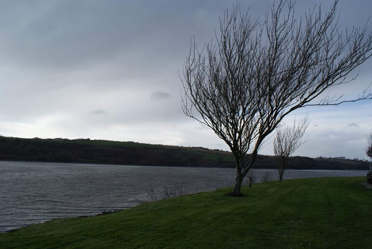 The River Bandon, Kinsale right before a storm  Photo provided by Patrick Salerno '21