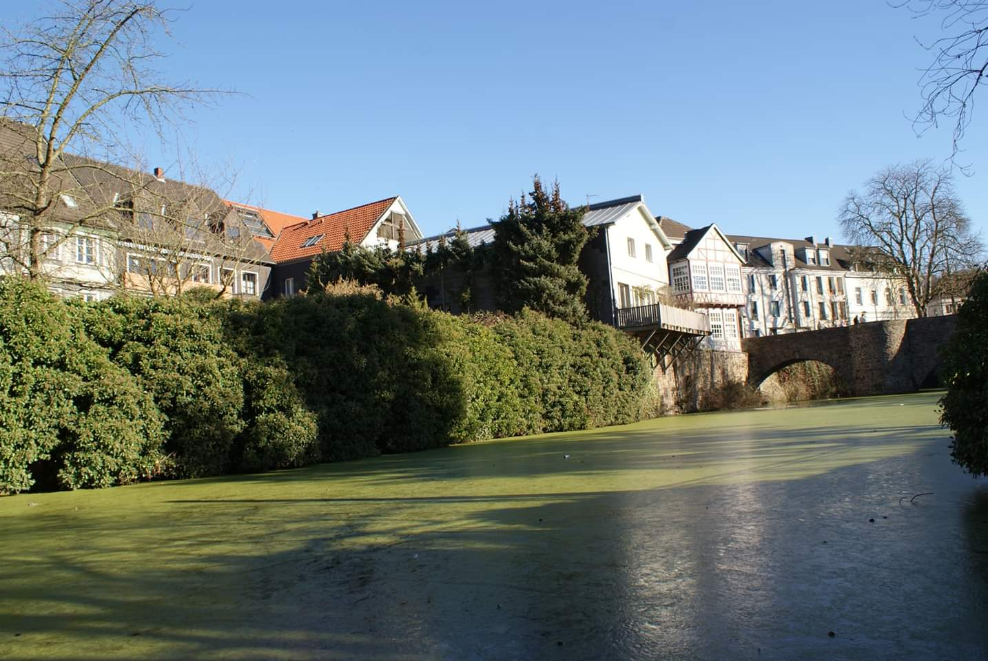 River in Kittwig, Germany  Photo provided by Patrick Salerno '21