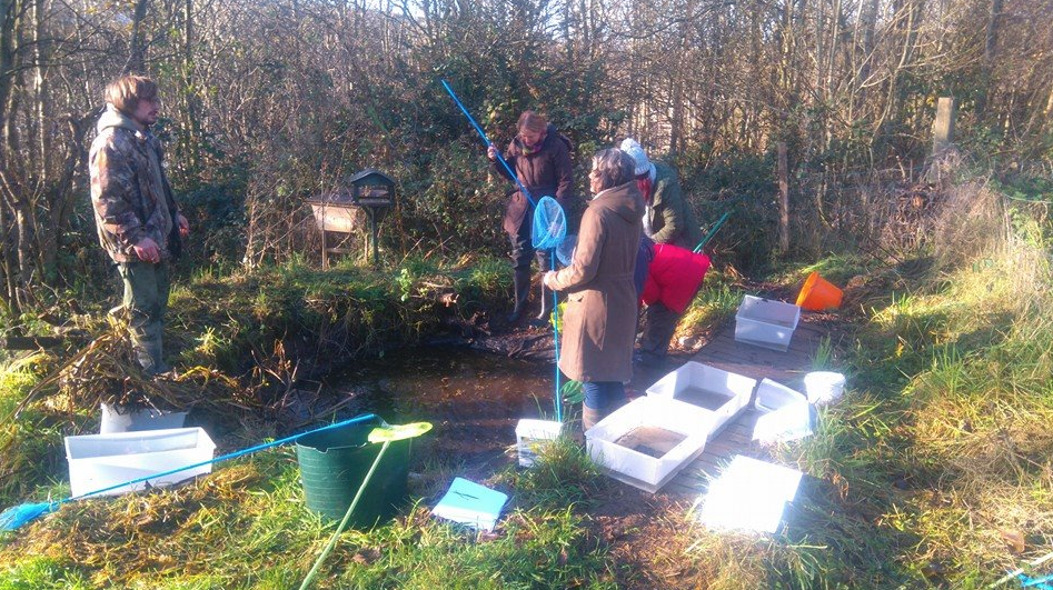 Pond Conservation - November 25th 2017 10am-12pmA very practical session to discover and rescue all that is living in the wildlife pond and then help with draining and reclining it so the area can thrive.. we will also be digging the wildlife garden to plant some fruit trees ..wellies a must!