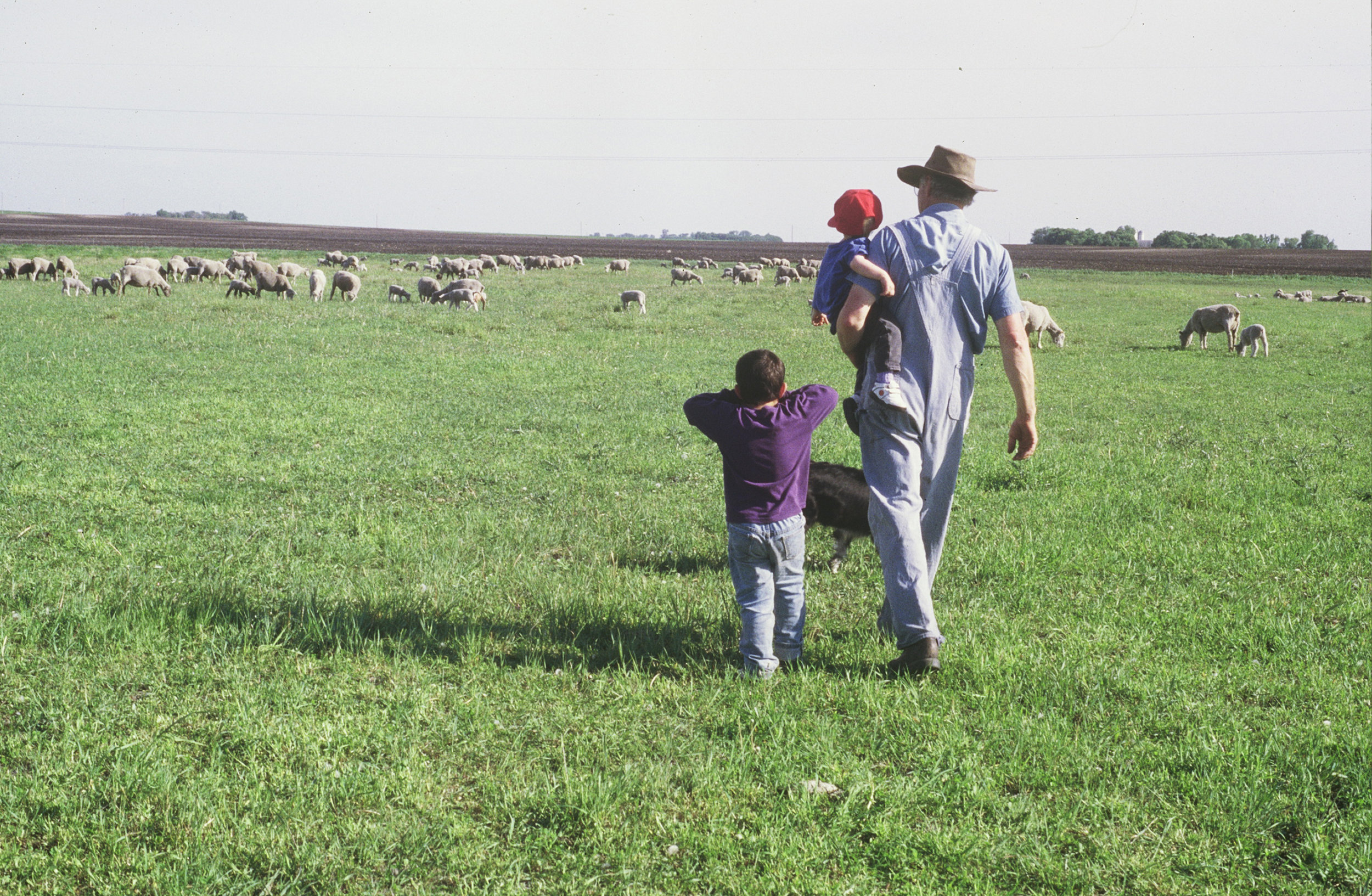 Jim VanDerPol with grandkids in the family pastures.