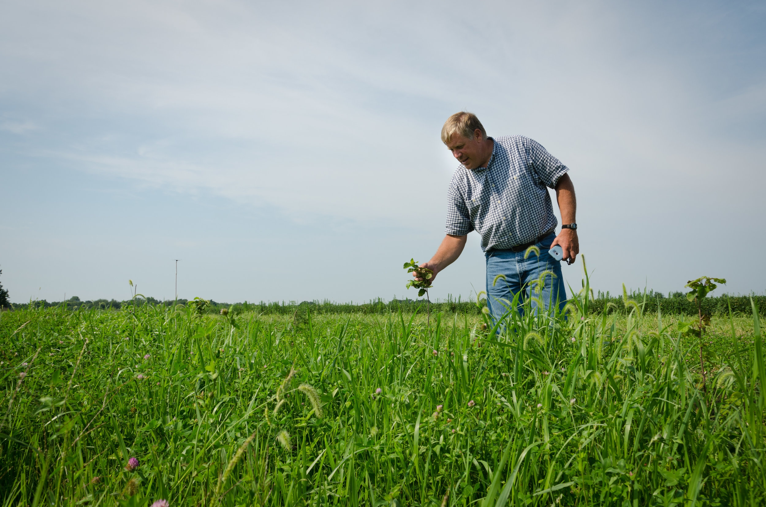 Woody Woodruff inspecting his Modesto farm fields.