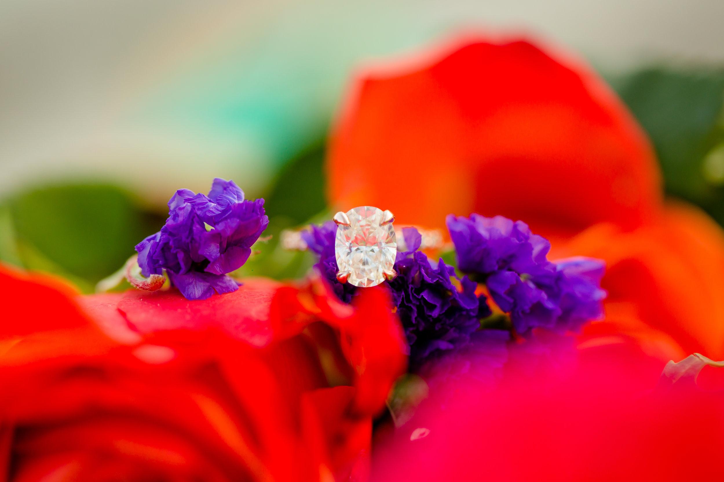 hayley ring.jpg