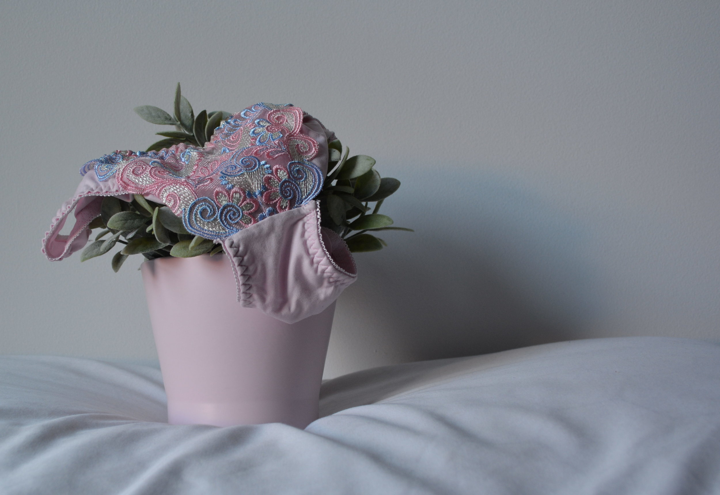 potted-plant-with-pillow-e1478487211219.jpg