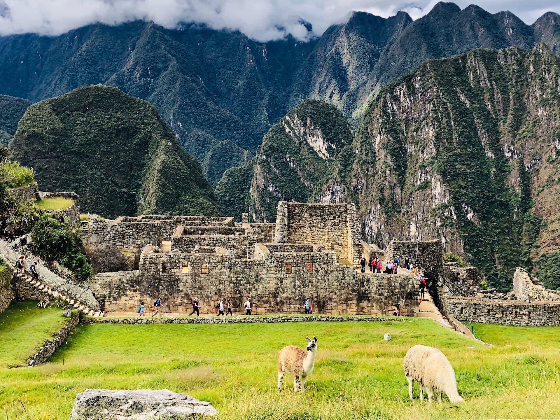 The First Principle Machu Picchu Post Expedition 15.jpg