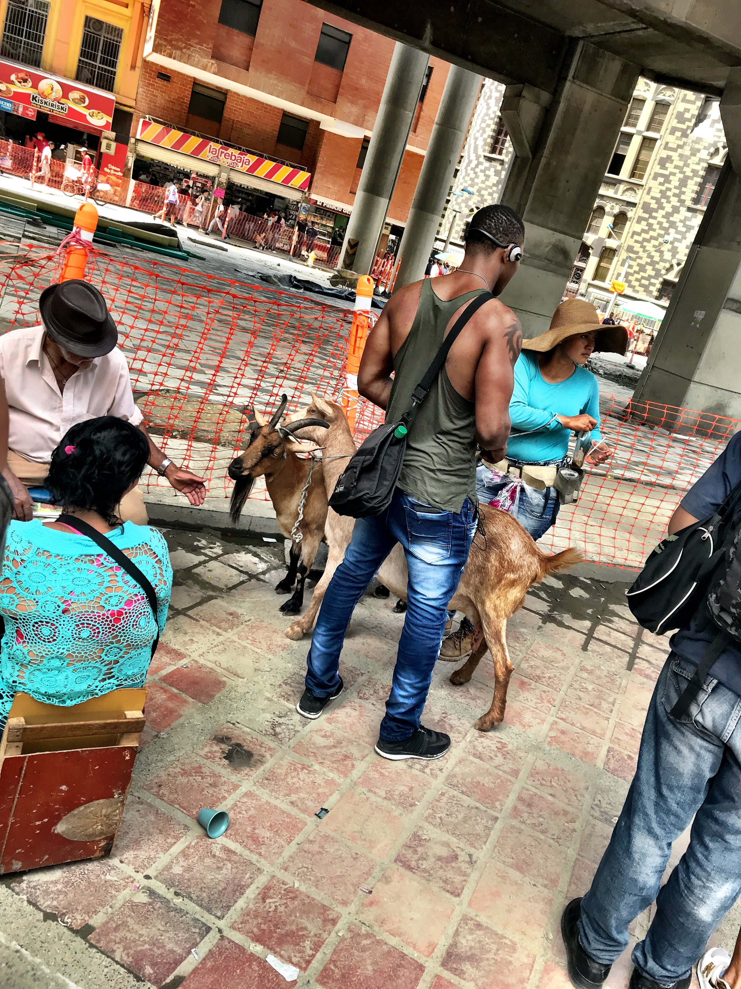 Fresh Milk - Get some fresh squeezed goat milk in town square. Wonder if this would fly in Vegas?
