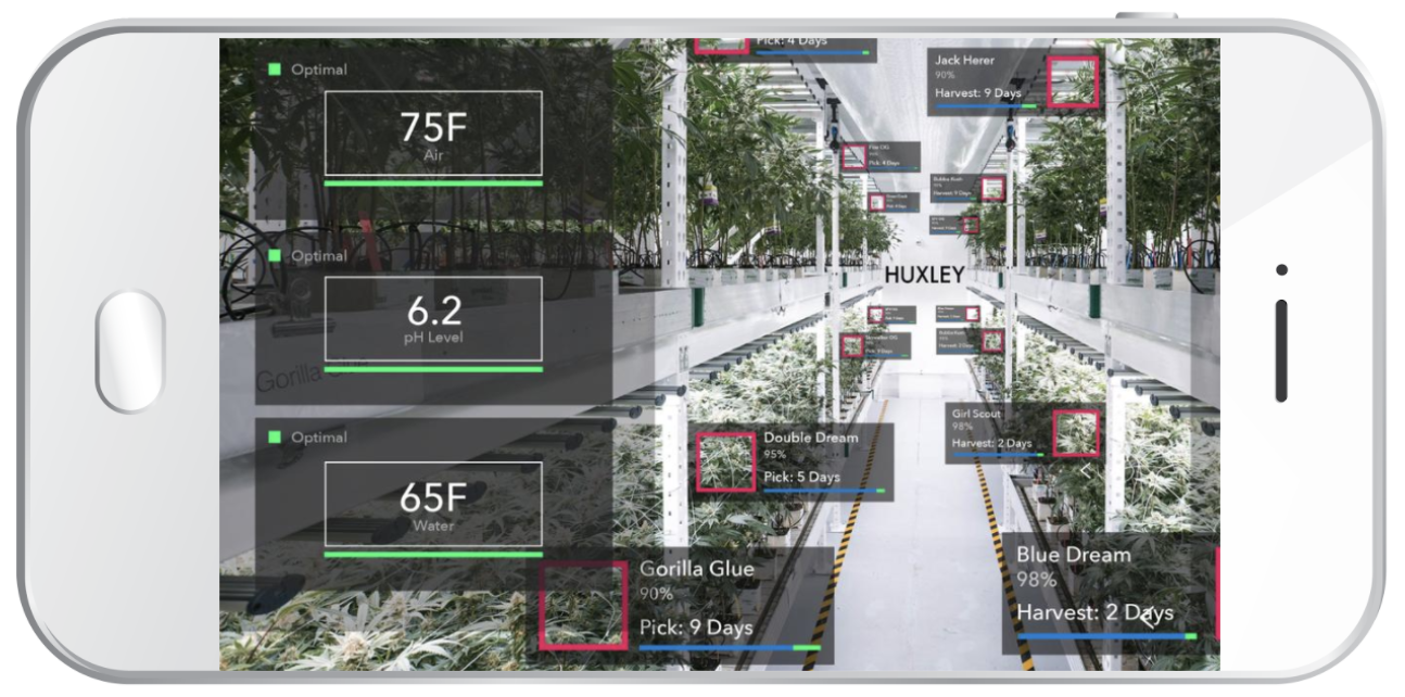 When marijuana is legalized in Canada in July 2018, retailers could use augmented reality to provide relevant information about various strains at the point of purchase.