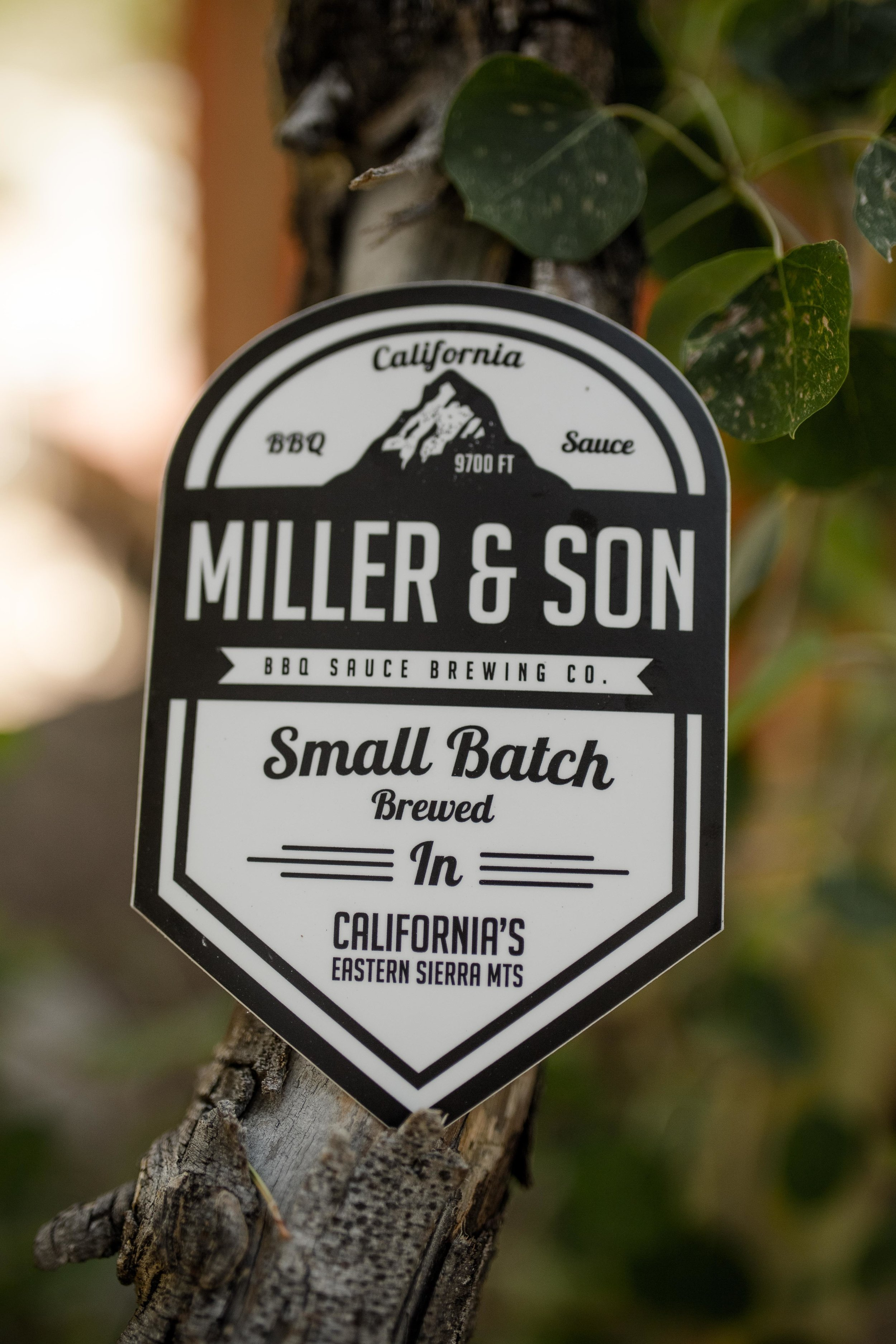 Miller&Son Aug 2015-10.jpg