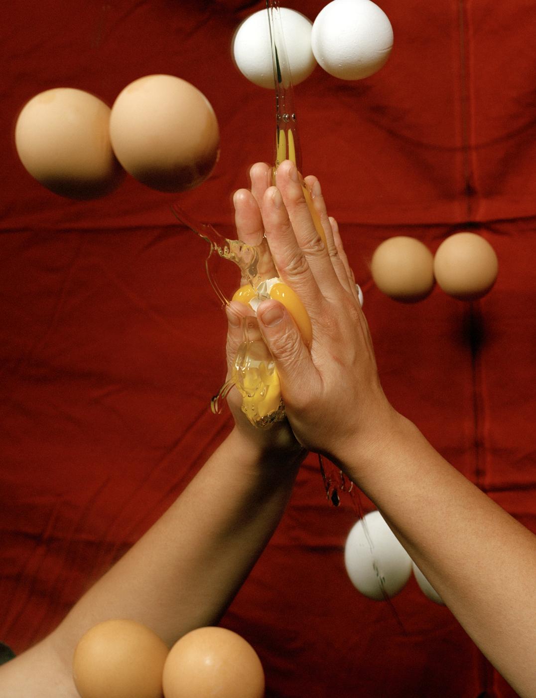 (Smashed Egg)