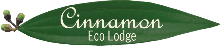 Cinnamon Eco Lodge Logo.png