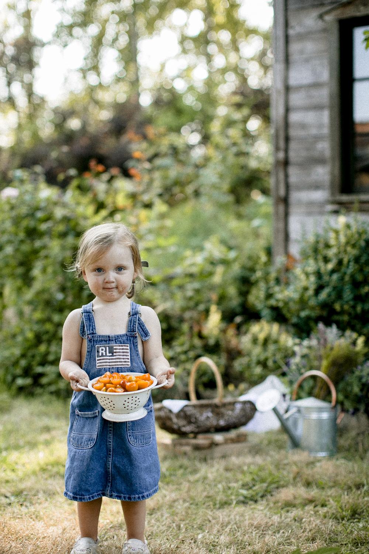 farm to table-108.jpg