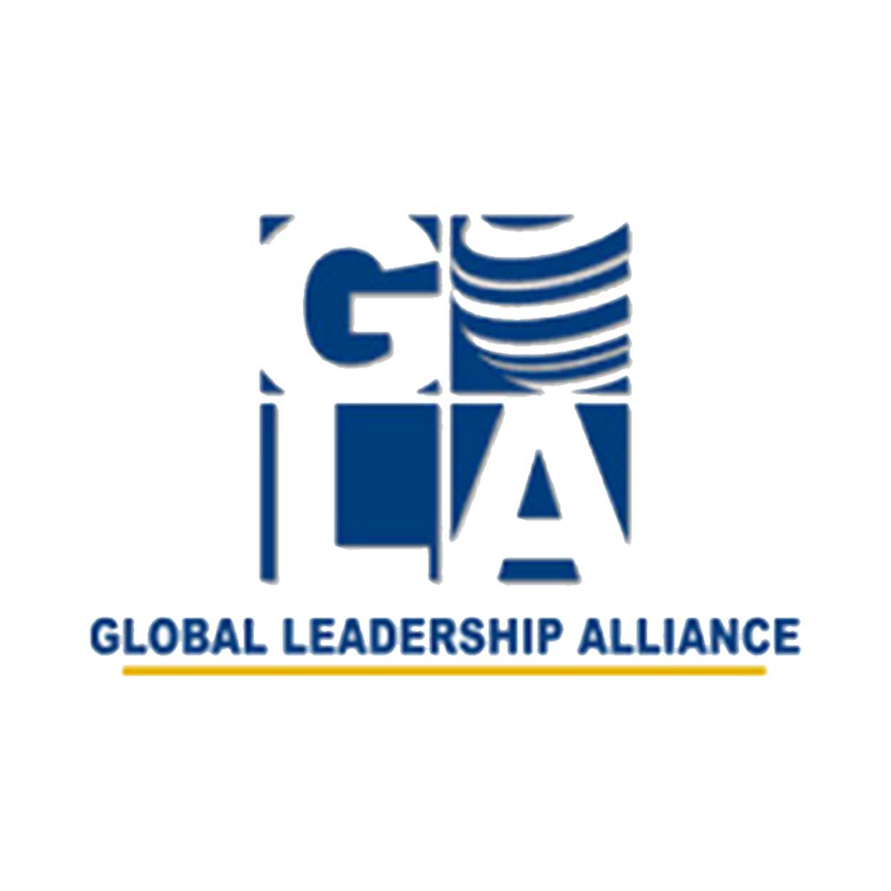 Global Leadership Alliance - Utilized HTML, CSS, ASP.NET, SQL and VB Script, converted an online HTML/Microsoft Access database web solution to an ASP.NET/SQL server solution for company's online measurement system. Also implemented an on-site Microsoft Exchange Server Email solution and eventually migrated end-users to Microsoft Office 365 and Microsoft CRM. Created custom workflows within the SharePoint and CRM online systems. Provided on-site and web-based training. Provided business process analysis and services.