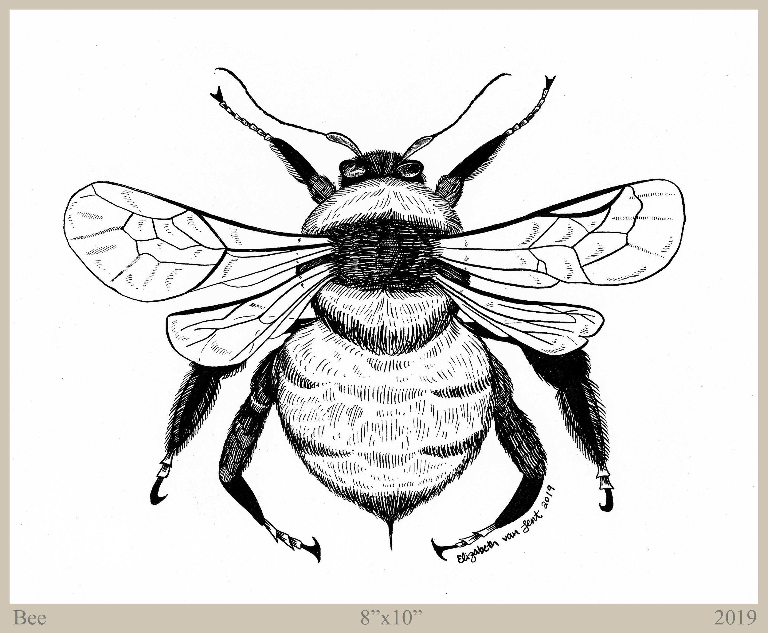 Bee_300_border_text.jpg