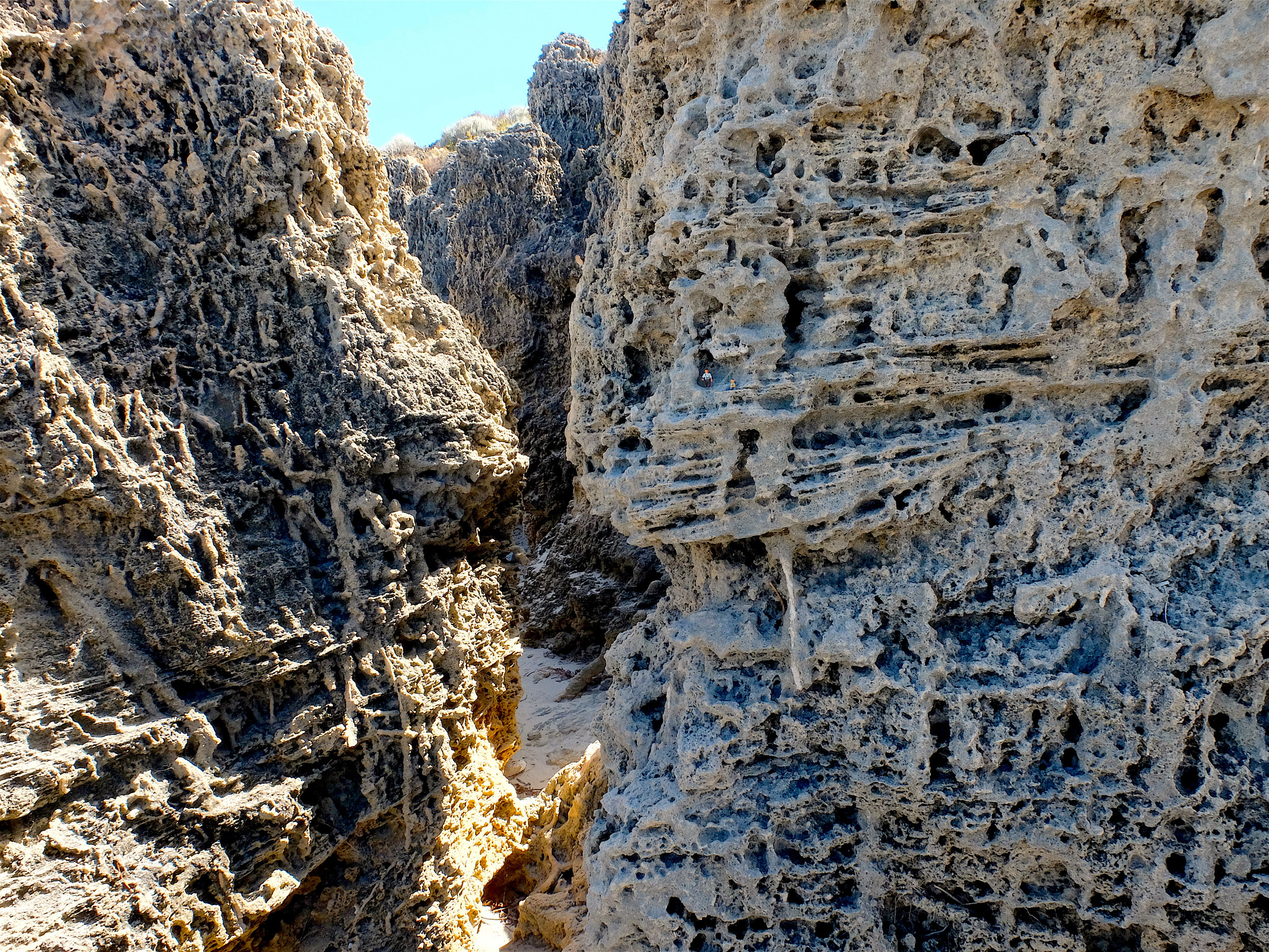 4. The Canyon