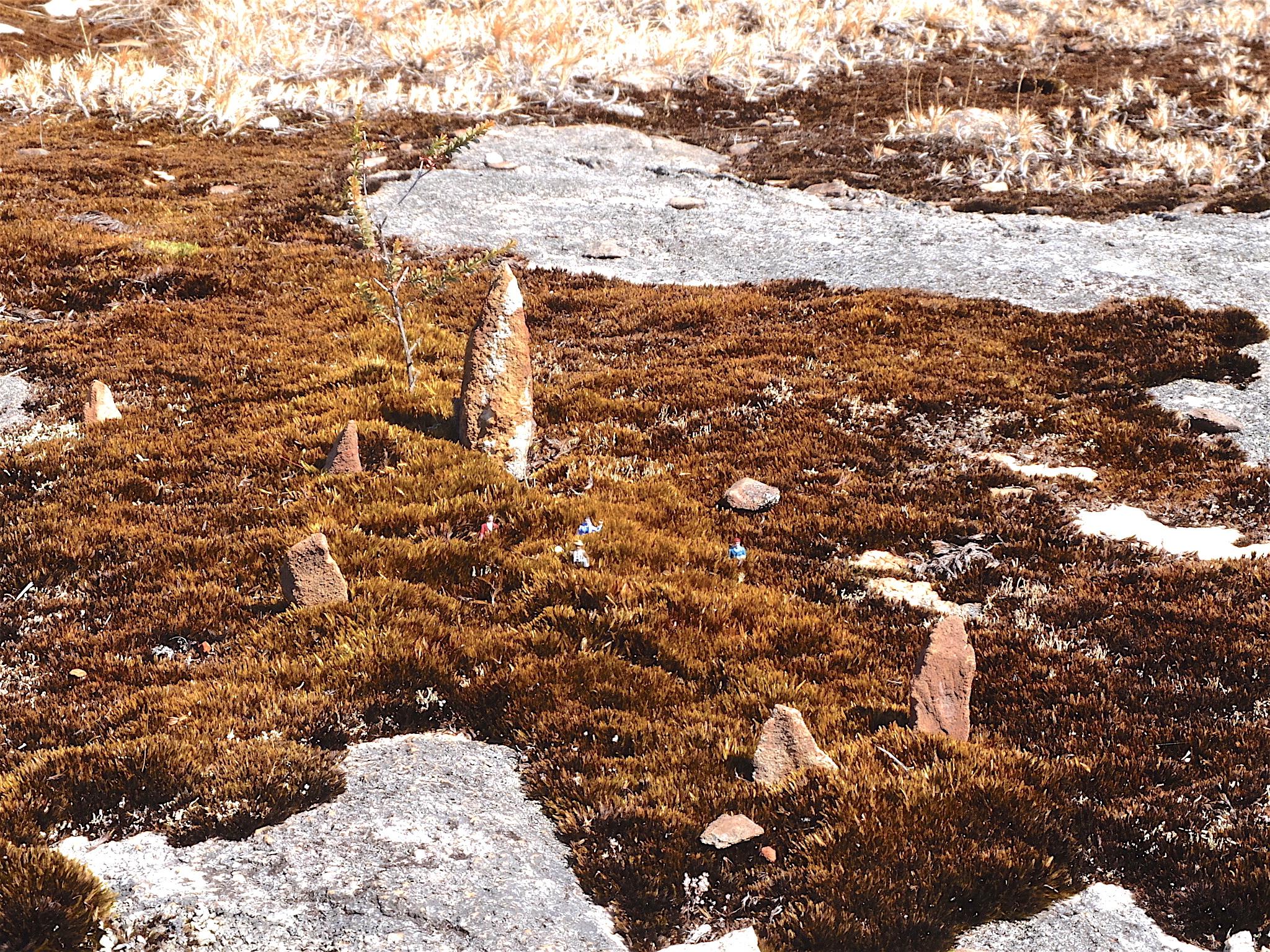 9. The Standing Stones