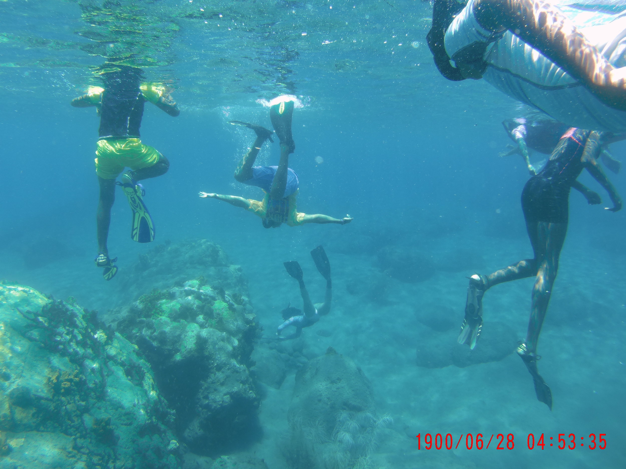 Snorkelling over the Little Bay reefs