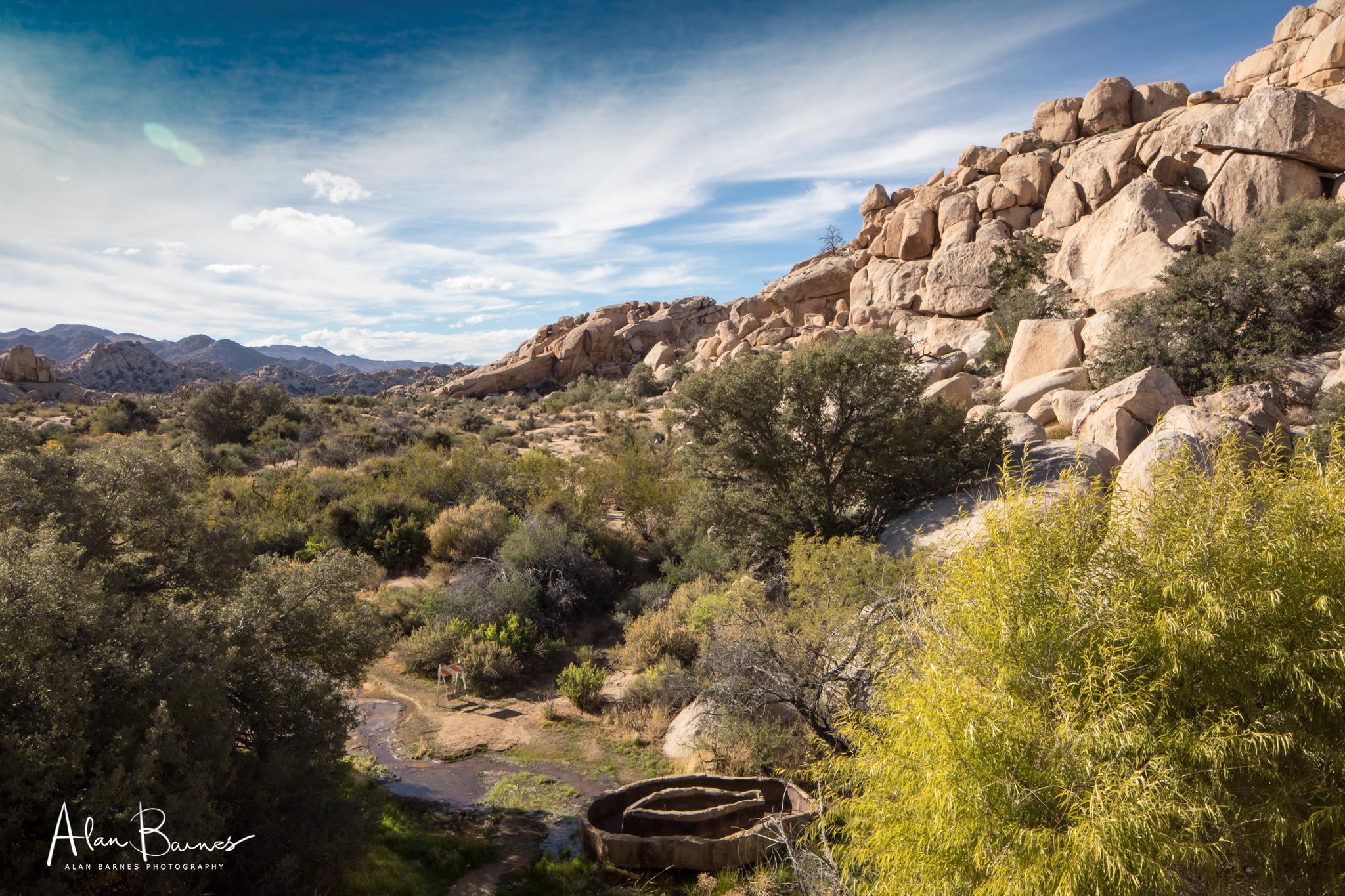 A desert water trough