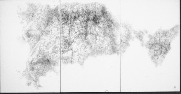 Junko Chodos, Dead Flower Series, No. 8, Byoobu, Pen-and-ink with wash.