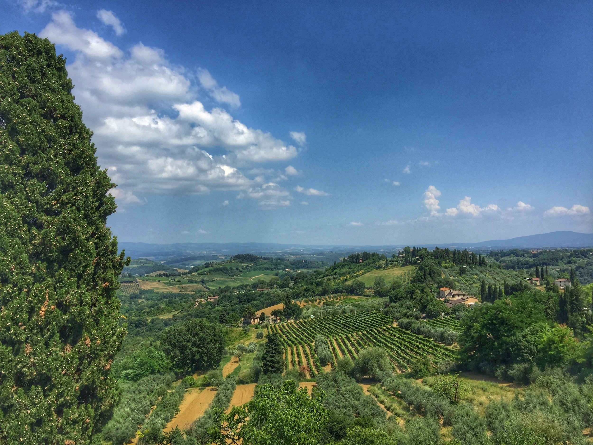 View from San Gimignano.