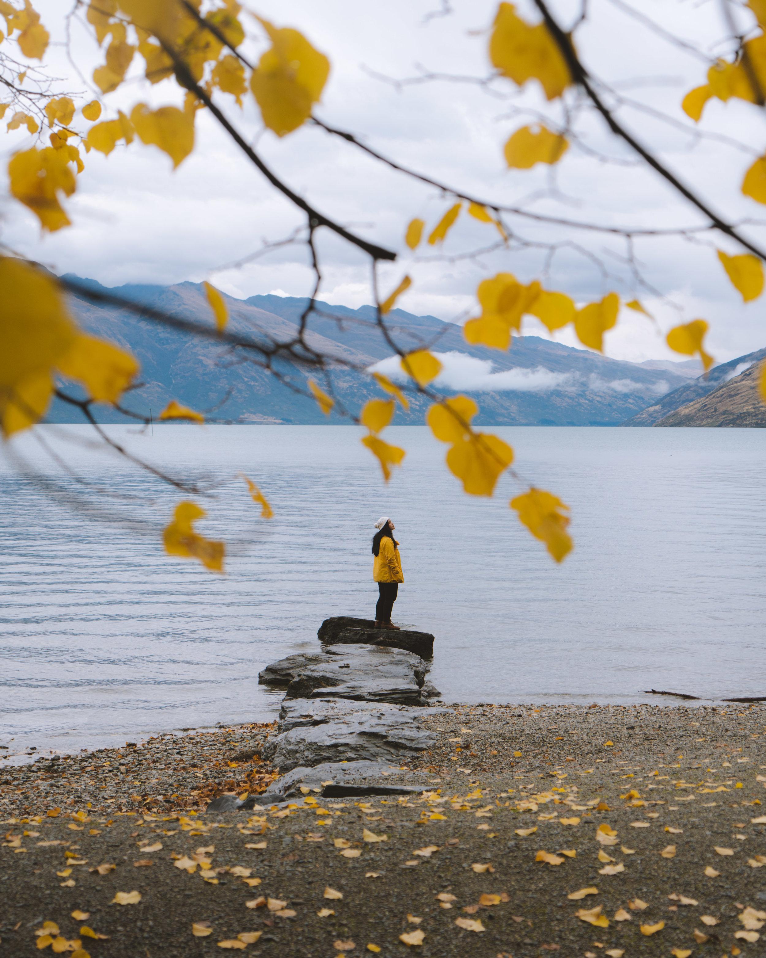 MV_Autumn_04.jpg