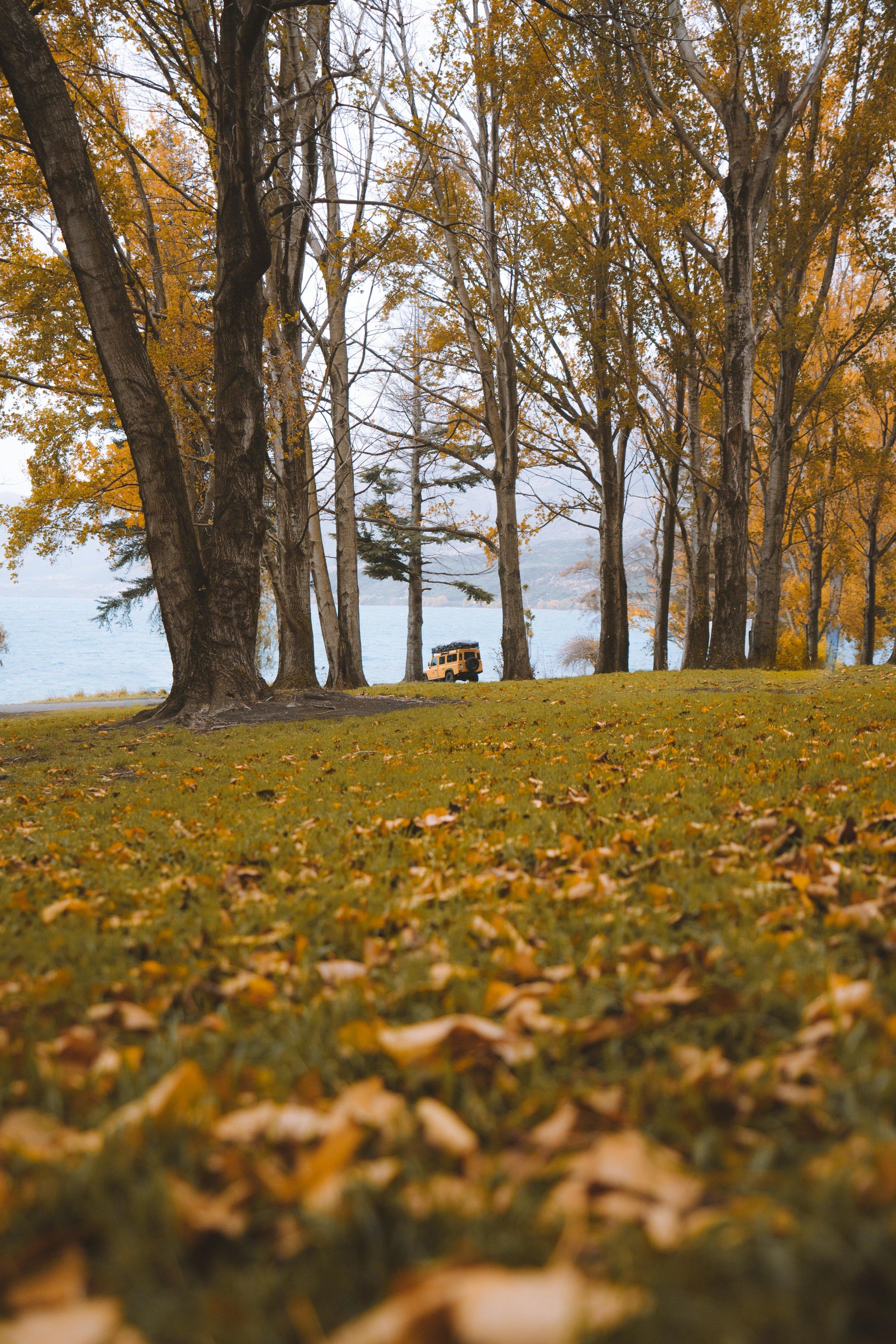 MV_Autumn_01.jpg