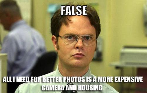false.jpg