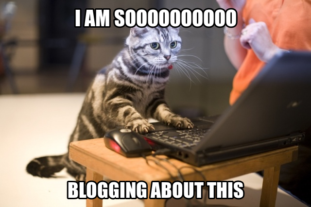how do circular polarizers work, blogging kitty excited to learn