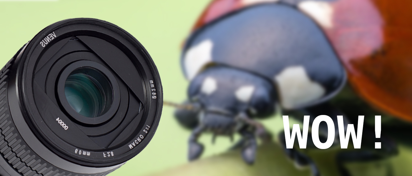 Veus-60mm-macro-feature-banner.jpg