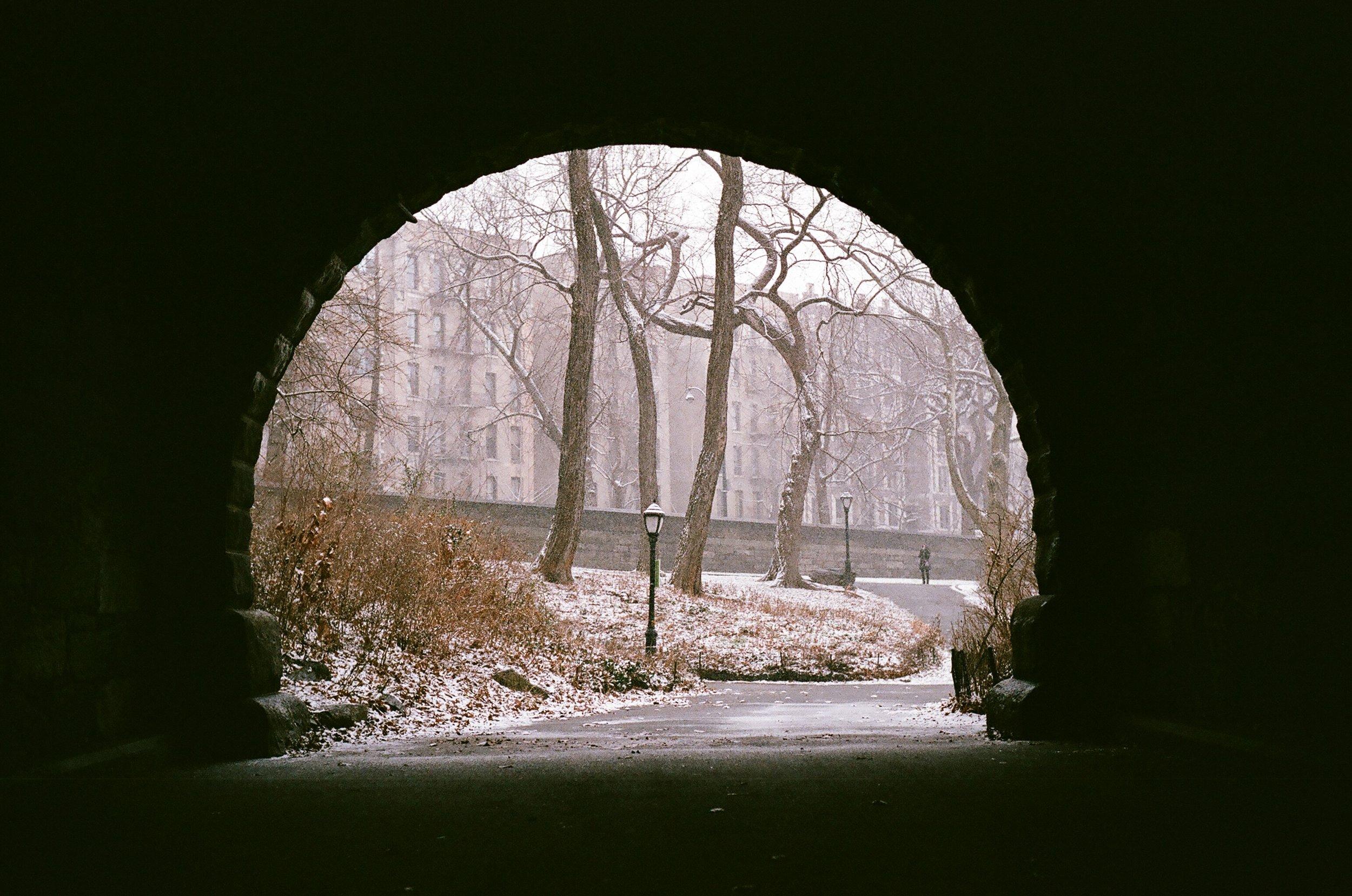 New York, New York, USA   Olympus OM-2n