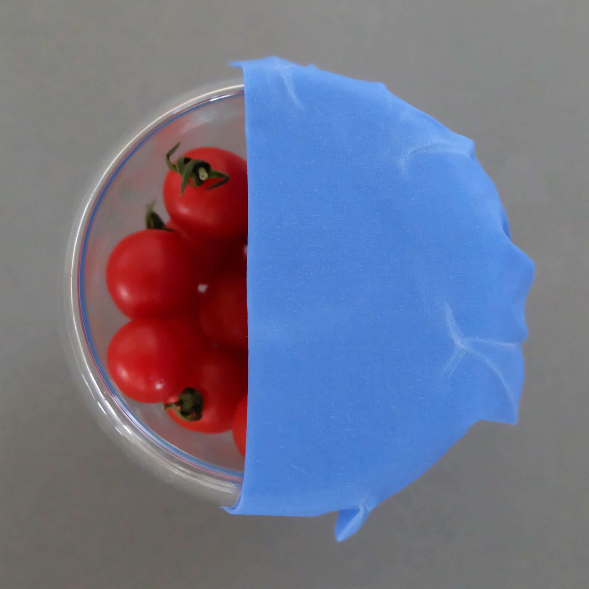 Wrappini - Petito Wrap-Tomatoes.jpg