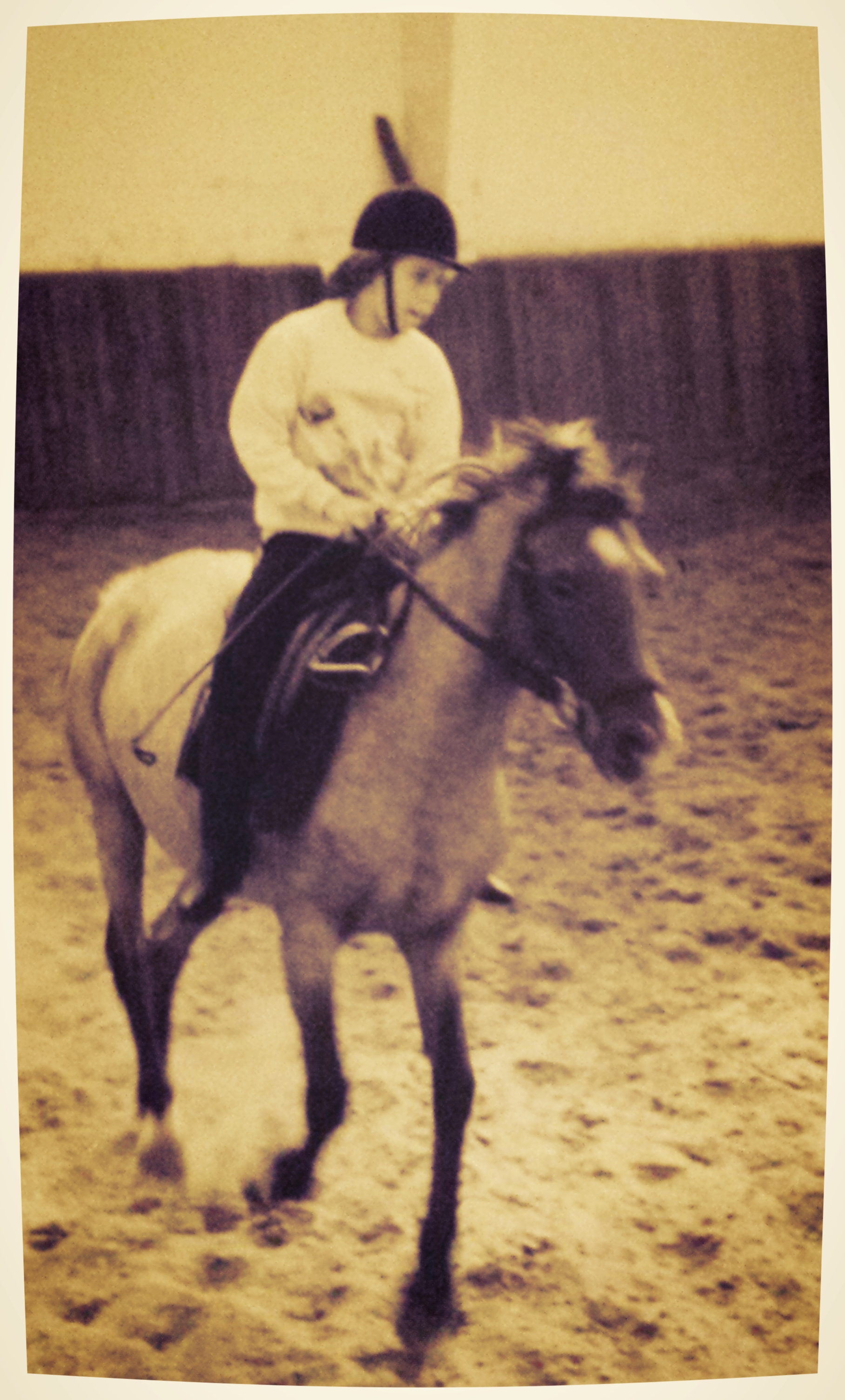 een onschuldig verjaardagsfeestje... - Ik werd 6 jaar oud en mijn ouders nodigden mijn vriendjes en vriendinnetjes uit op de plaatselijke manege om mijn verjaardag te vieren. En ik vond het heel leuk dus ging ik een week later nog een rijles volgen en de week nadien nog eens én dat bleef zo tijdens de daaropvolgende jaren.Borstelen tot ze spiegelden, uitkijken naar het paardenkamp, paardenprentjes verzamelen, kriebels in de buik als ik op mijn favoriete manegepony mocht en altijd zeuren voor een eigen pony bij elke verjaardag of sinterklaas. Dat is in een notendop mijn kindertijd. Tot ik 15 werd en ik op de fiets 3 uur heen-en-weer moest fietsen en mijn andere sportambities en schoolwerk begonnen te overheersen. Het vuur voor paarden doofde tot een klein waakvlammetje....