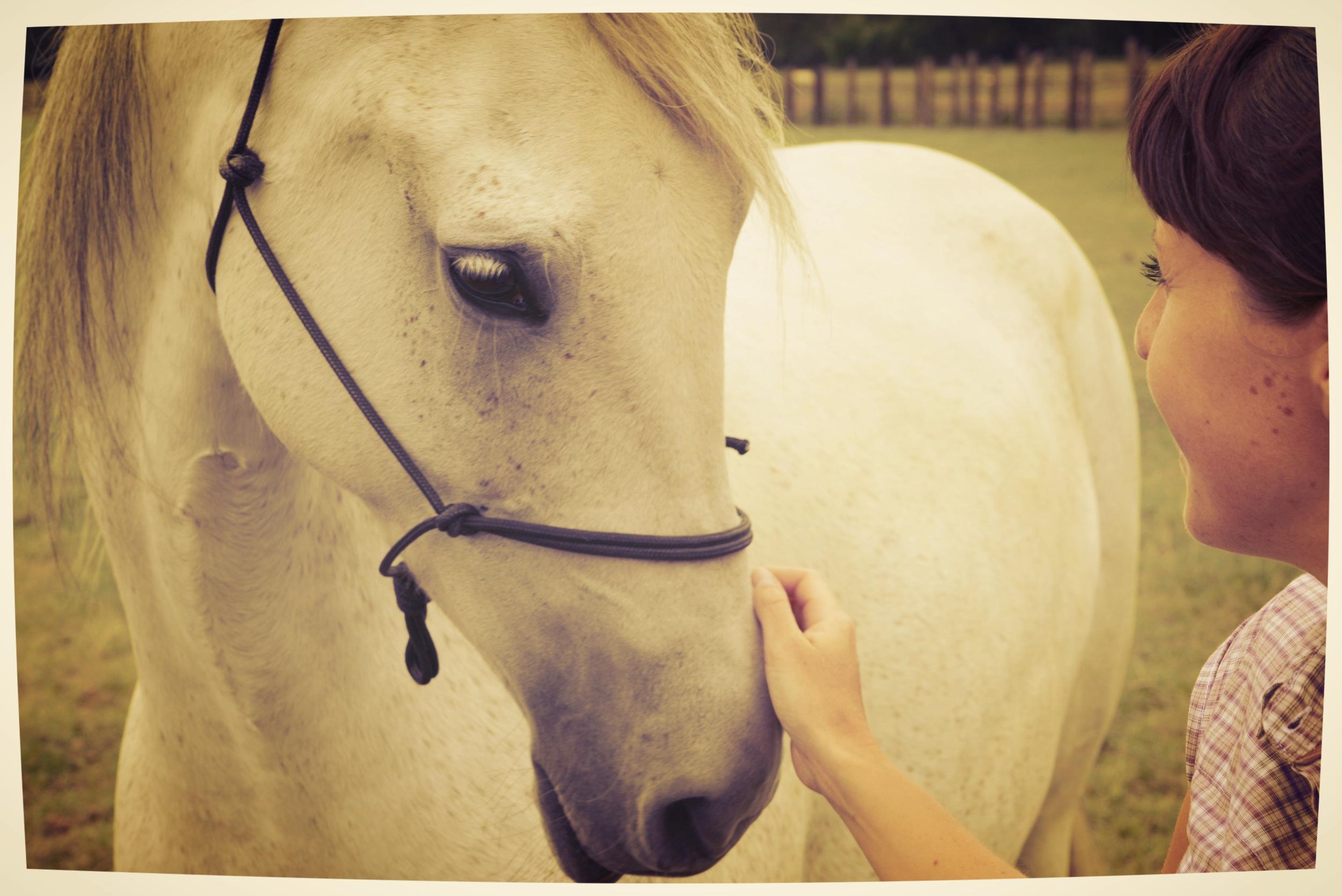 Connectie tussen jou en je paard.JPG
