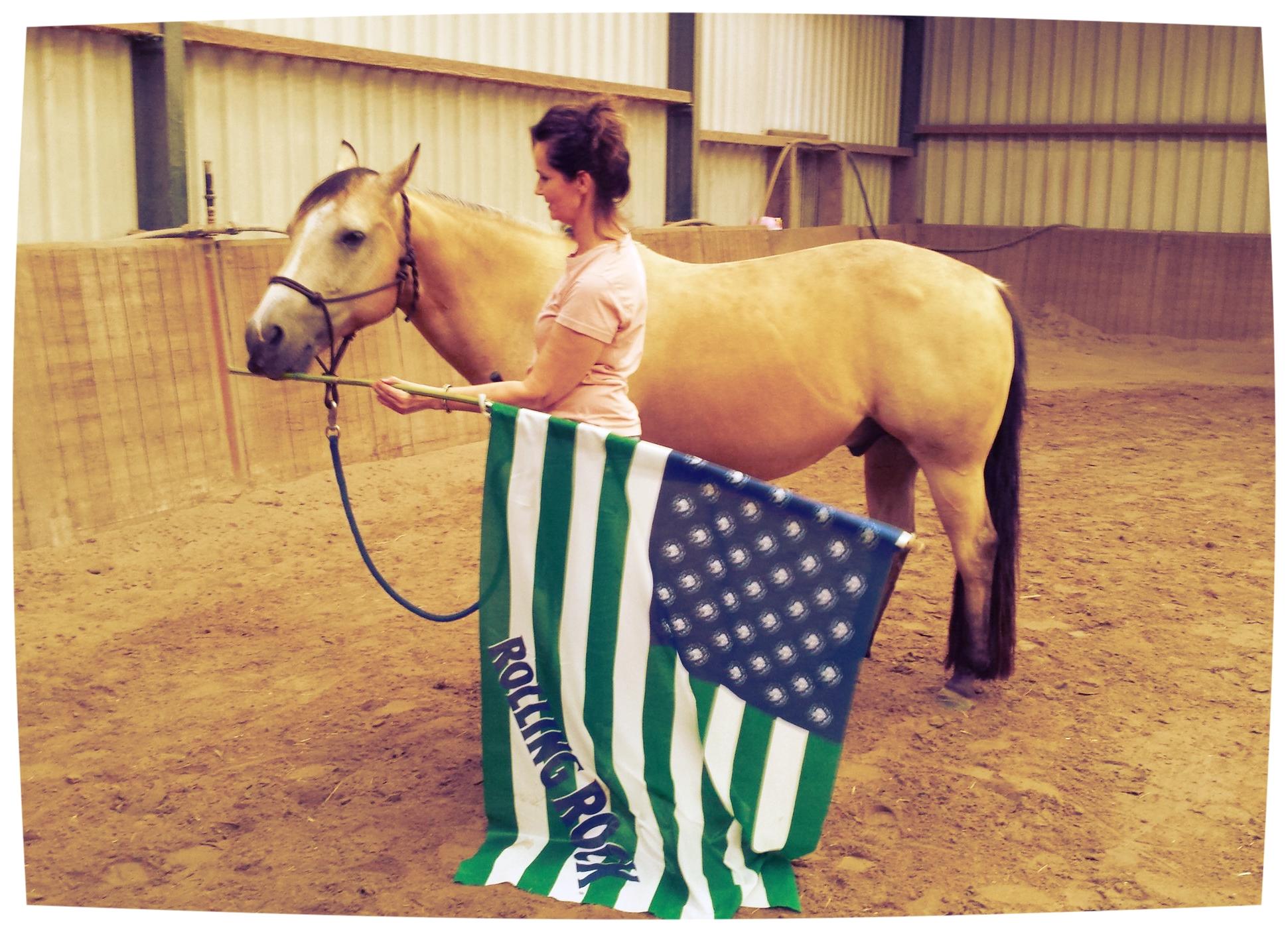 agility natural horsemanship barbara hoekstra