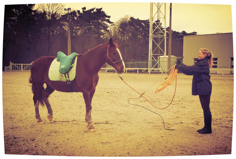 'Oortjes naar achteren'-houding motiveert een paard om iets met die druk te doen. De tools helpen ons om met ons miezerig mensenlichaam dezelfde dimensies als een paard aan te nemen.